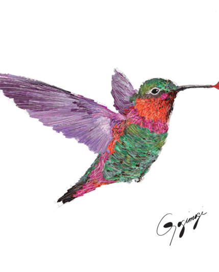 Hummingbird Front Rasterized 1200_1600