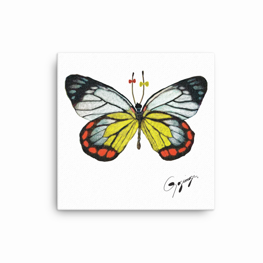 Painted Jezebel Butterfly Wall Art By Gogimogi Butterfly Art Colorful Butterfly Wall Decor Whimsical Butterfly Digital Art On Canvas